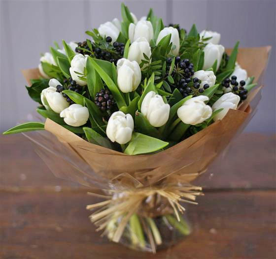 Excellent white Tulips