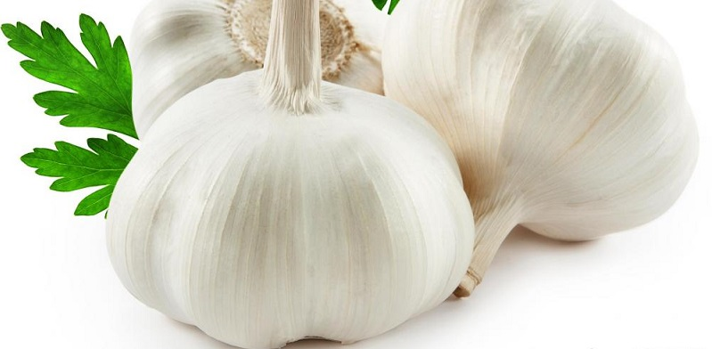 Garlic is the most effective & healthy foods for weight loss